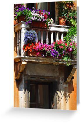 Venice Window by Thomas Barker-Detwiler