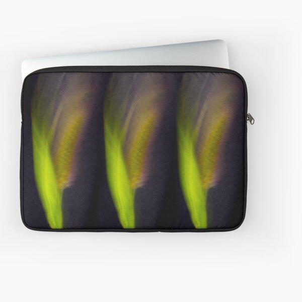 Fleur Blur-Abstract Bristle Grass Laptop Sleeve