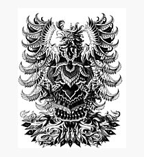 Heraldic Phoenix Photographic Print