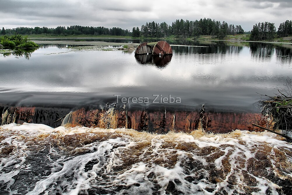 From Stillness to Wilderness by Teresa Zieba