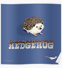 Cute Hedgehog Poster