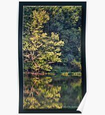 Lake Reflection Poster