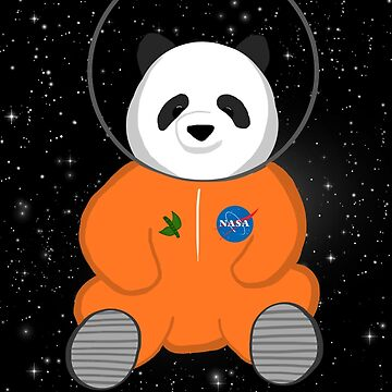 Space Panda Astronaut by olivialu