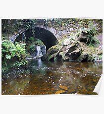 Torc stream bridge Poster