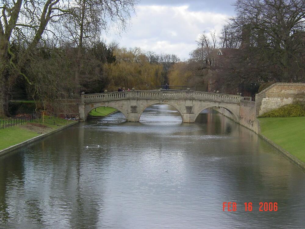 The Backs Cambridge by Richard Elston