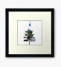 Sequoia Tree Sticker Framed Print