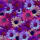 Purple Flower Collage by HeavenOnEarth