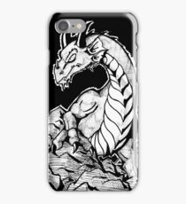 From the Rocks iPhone Case/Skin