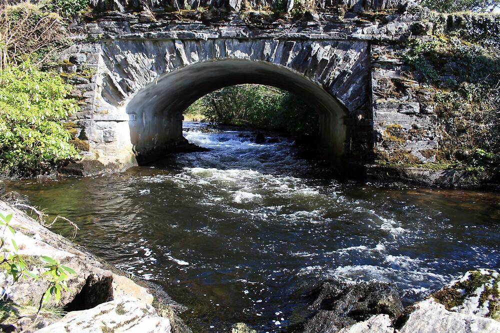 County bridge by John Quinn