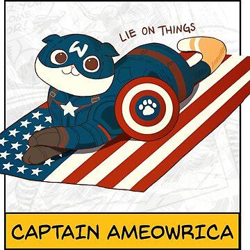 Captain Ameowrica by derlaine