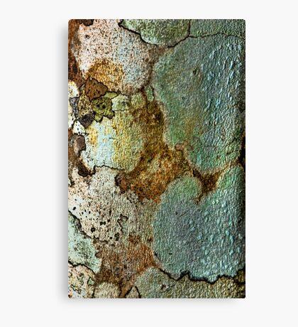 Textured Bark Canvas Print