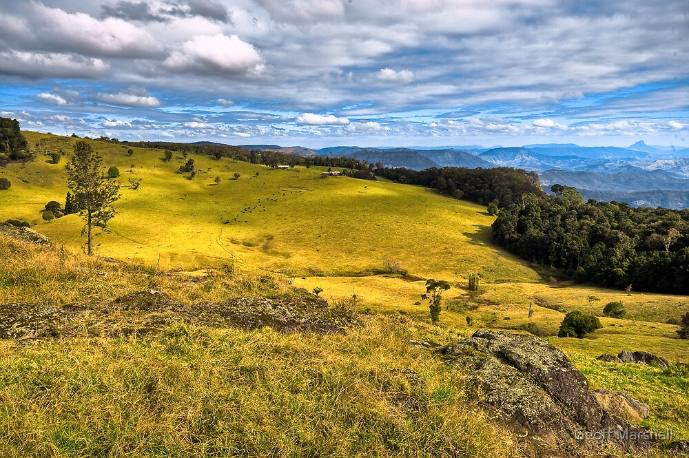 Lamington National Park by Geoff Marshall