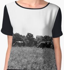 Cows Women's Chiffon Top
