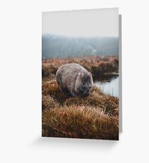Tasmanian Wombat Greeting Card