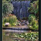The Waterfall by Sheryl Gerhard