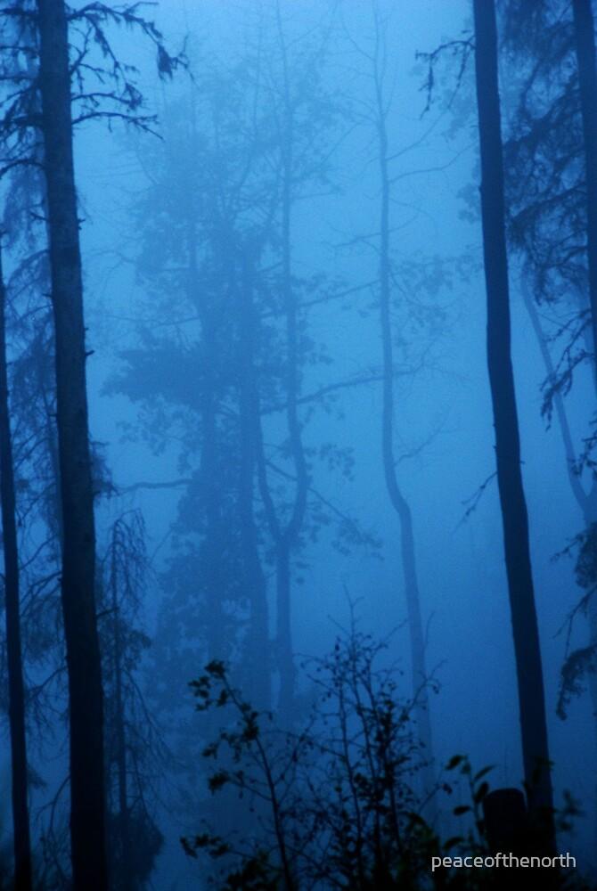 Foggy Blue by peaceofthenorth