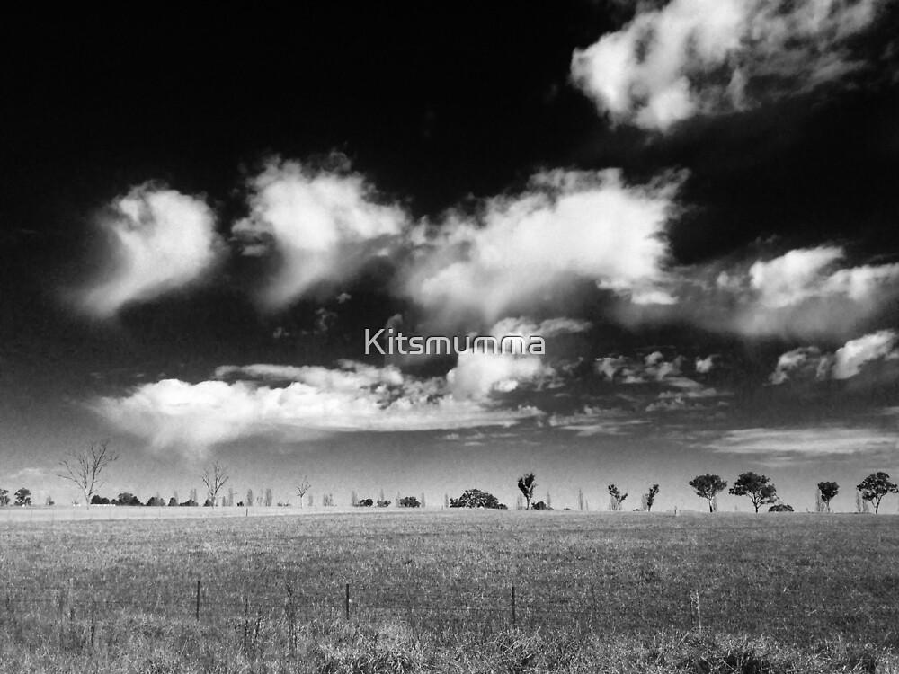Northern Tablelands - New South Wales, Australia by Kitsmumma