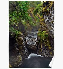 Beautiful nature scenery of Englishman River canyon on Vancouver Island art print Poster