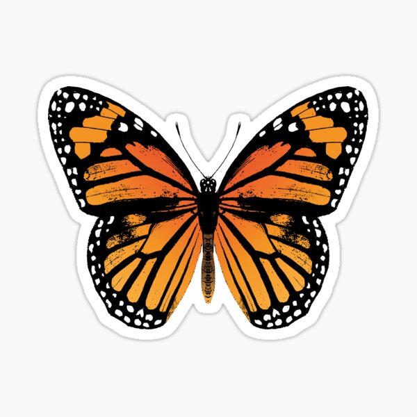 Monarch Butterfly | Vintage Butterflies |  Sticker