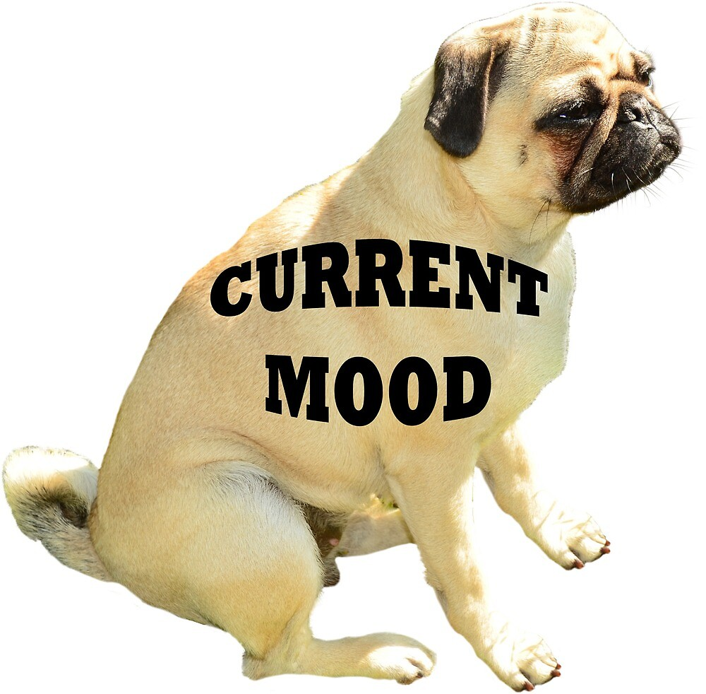 CURRENT MOOD DOGGY STYLE by EALA