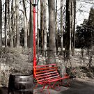 Red Bench by Artway