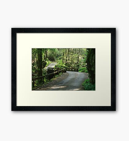 Easy Going Framed Print