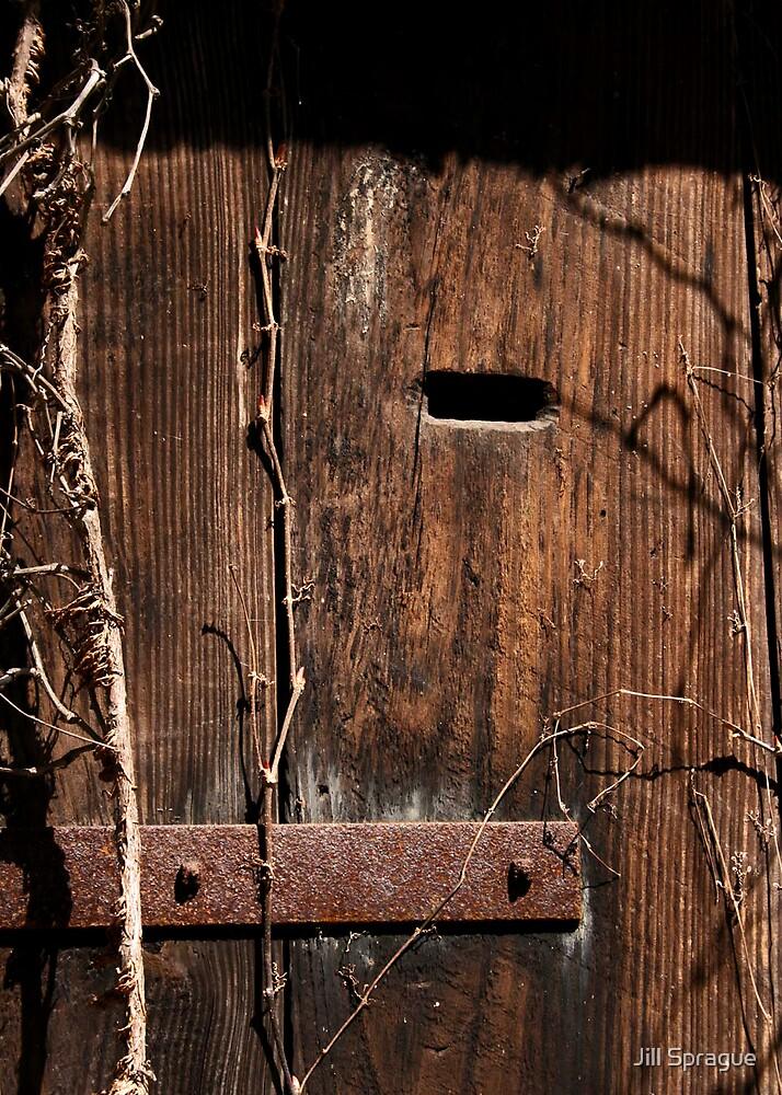 Wood It? by Jill Sprague