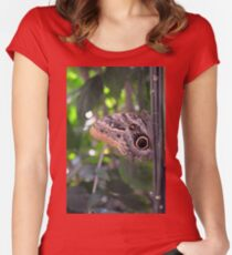 Beautiful brown butterfly in the garden  Women's Fitted Scoop T-Shirt