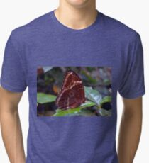 Brown butterfly on green leaves  Tri-blend T-Shirt