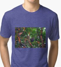 Beautiful butterfly sitting in a tree  Tri-blend T-Shirt