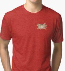Incredible Kitten  Tri-blend T-Shirt