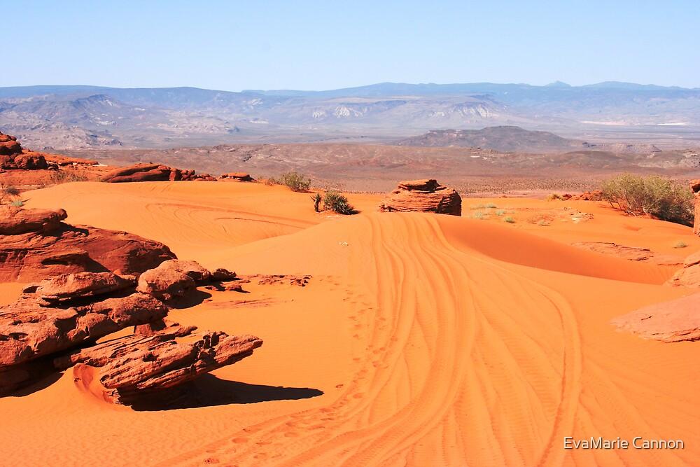 Utah Dunes... by EvaMarie Cannon