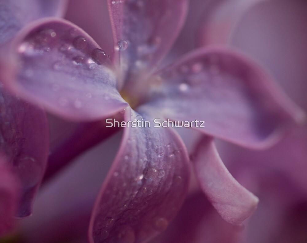 Her Garden.  by Sherstin Schwartz