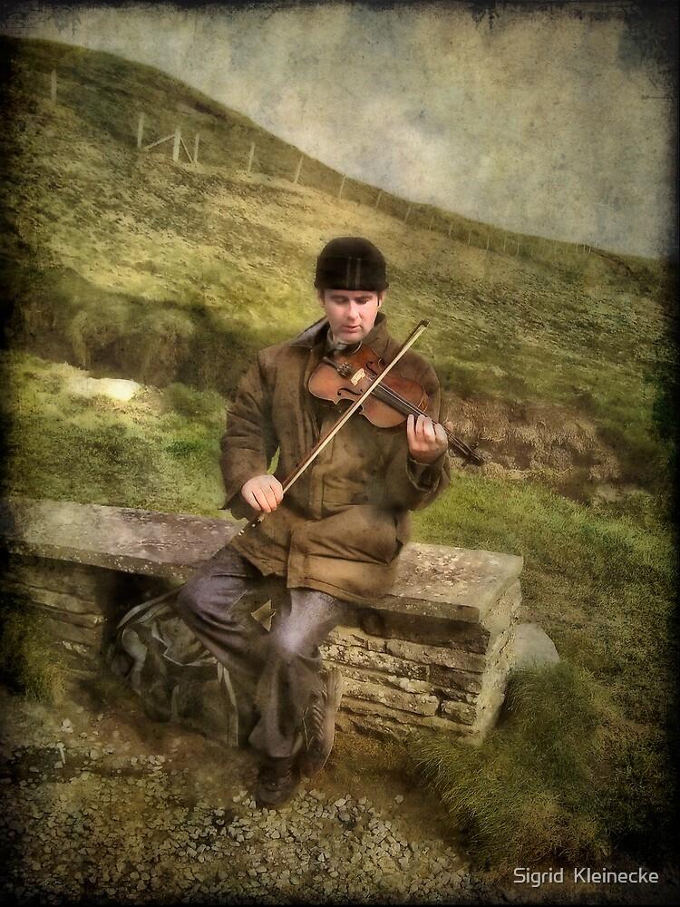 The fiddler by Sigrid  Kleinecke