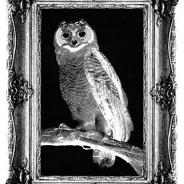 Scratchy Owl (Framed Vers.) by UberAutomaton