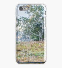 Frosty spiderweb at dawn iPhone Case/Skin
