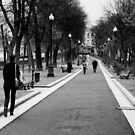 Arborists avenue - Moscow Russia by Norman Repacholi
