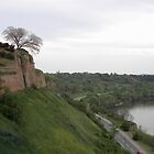 View from the Petrovaradin Fortress by Ana Belaj