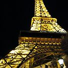Paris by Tracey Bransfield