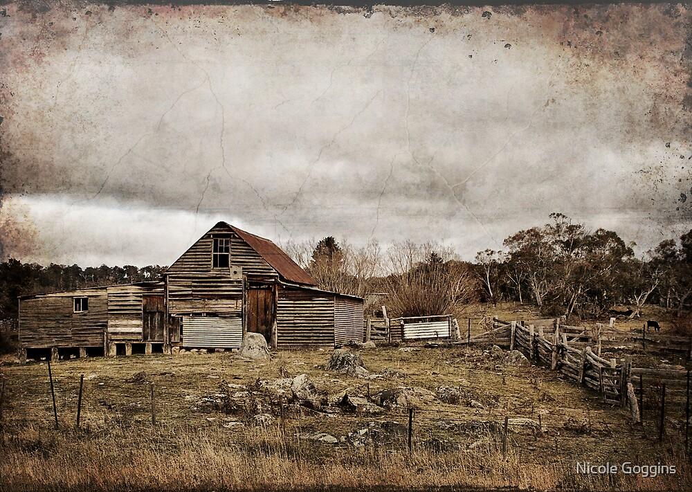 Old Farmhouse by Nicole Goggins