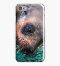 Sea Lion Around iPhone Case/Skin