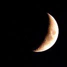 Monday Night Moon by Glenna Walker