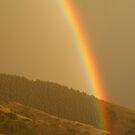 Rainbow by JamesMichael