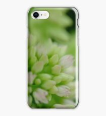 Macro photography iPhone Case/Skin