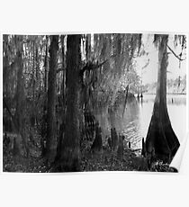 Lost In Time - Caddo Lake near Uncertain, Texas Poster