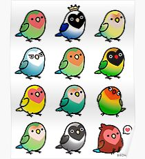 Chubby Lovebirds Poster