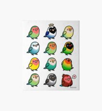 Chubby Lovebirds Art Board