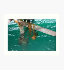Beachport Jetty Art Print