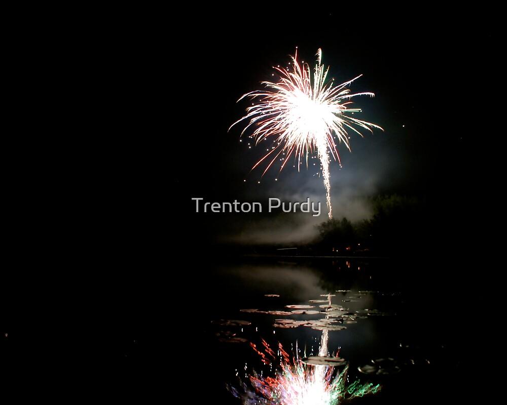 Fireworks by Trenton Purdy