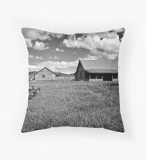 ~ The Old Homestead ~ Throw Pillow